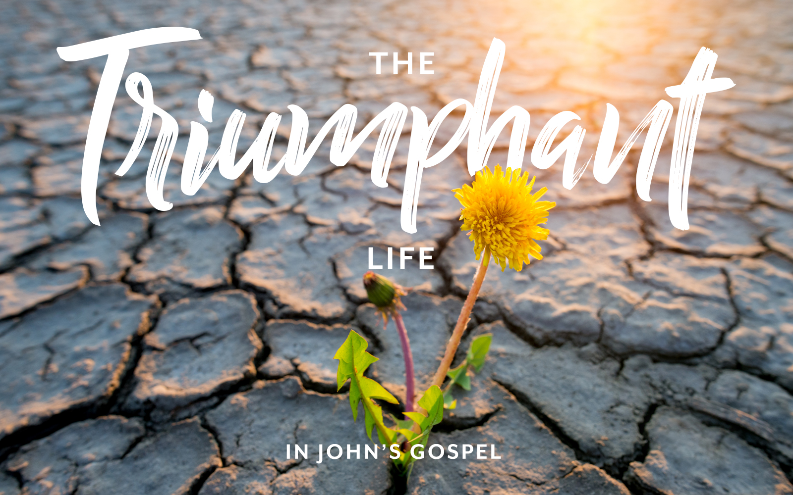 THE TRIUMPHANT LIFE - Life Serving Christ