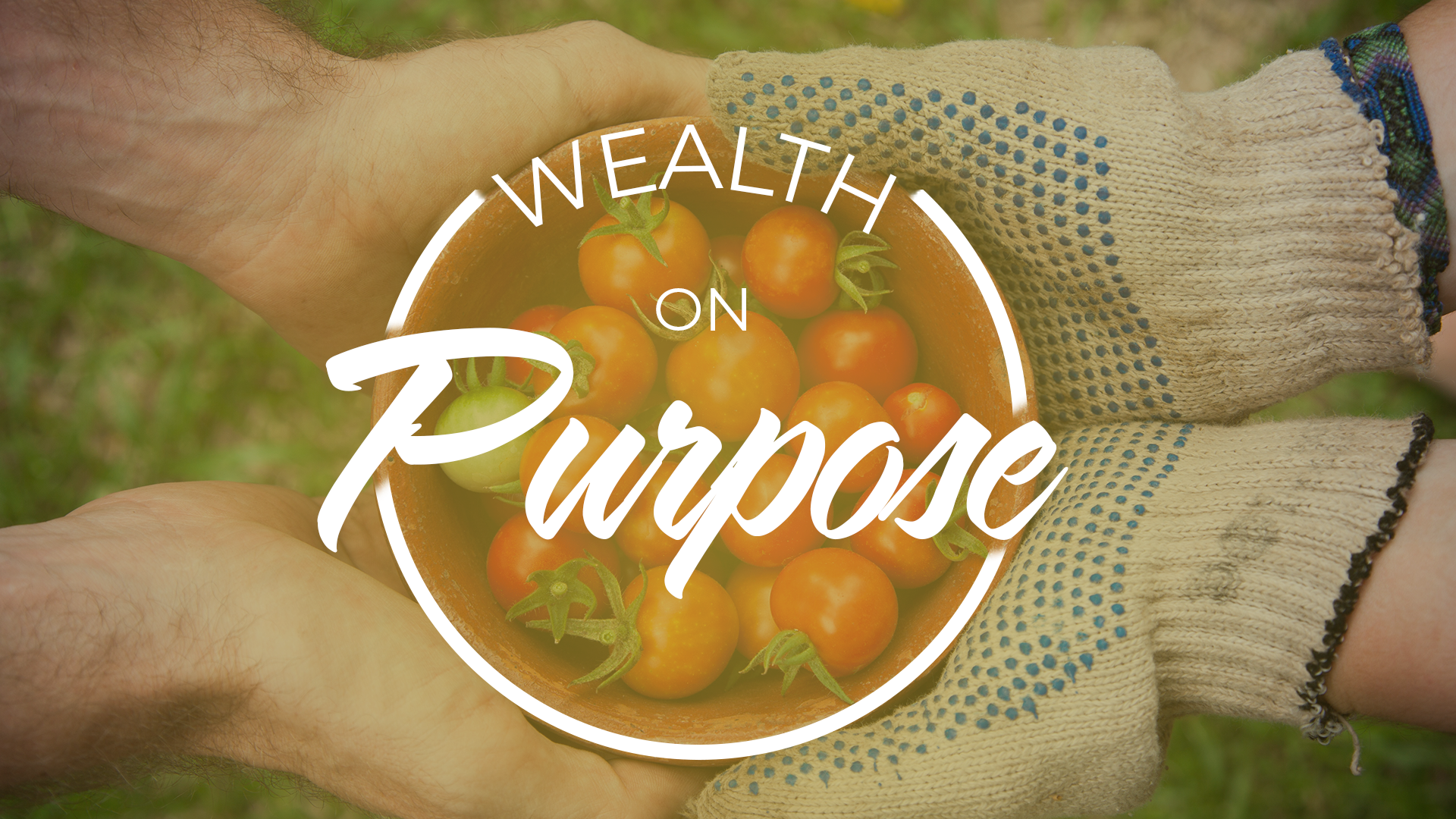 WEALTH ON PURPOSE - Wealth & Love